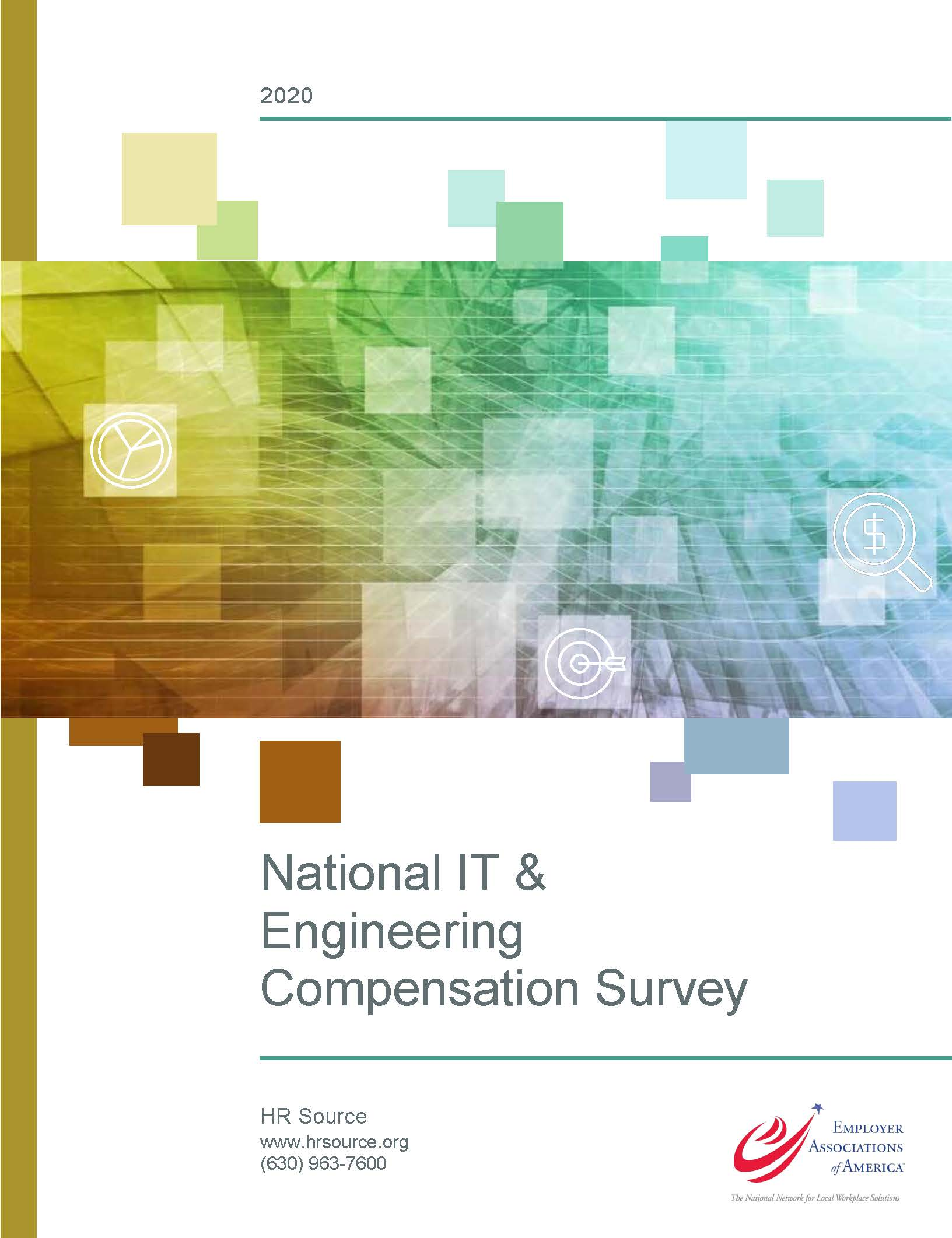 National IT & Engineering Survey 2020